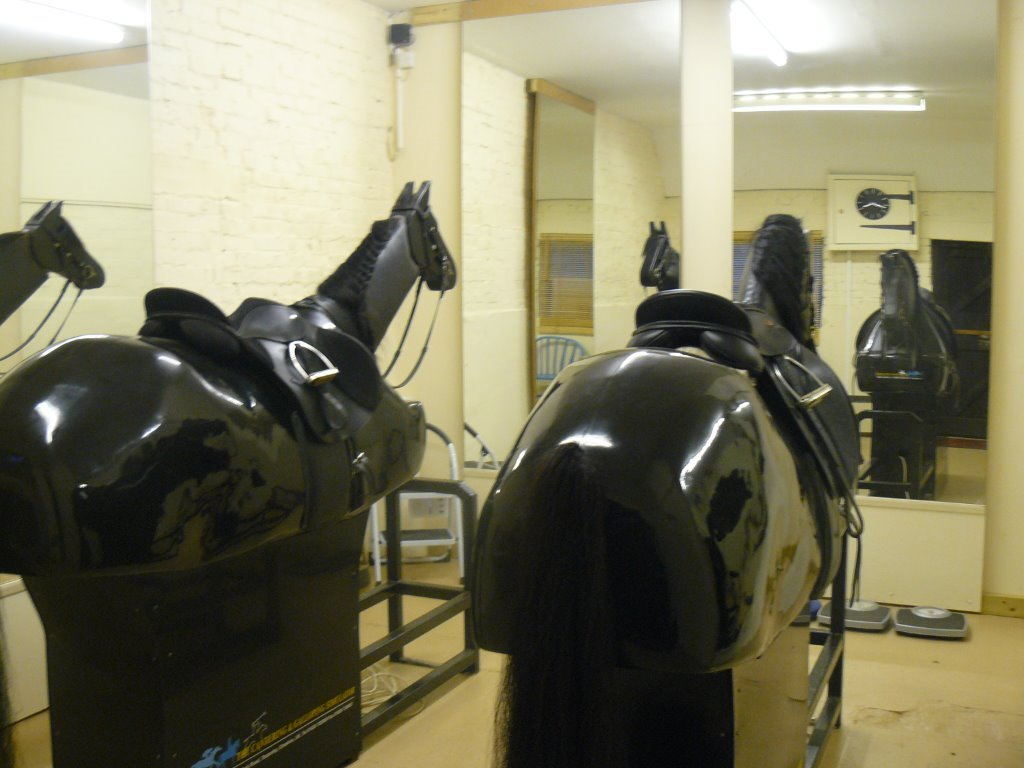 Mechanical horses for confidence building and rider fine tuning.