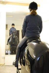 Testimonials and feedback from mechanical horse sessions